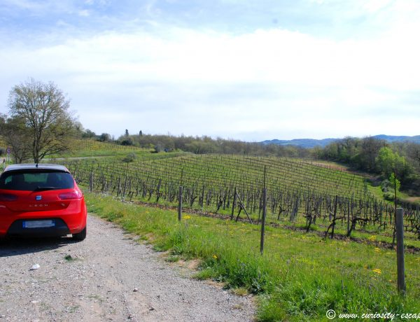 One week in Italy: roadtripping between Liguria and Tuscany