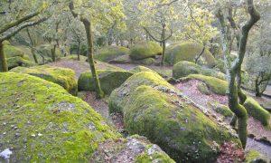 Portugal : une virée à Guimarães