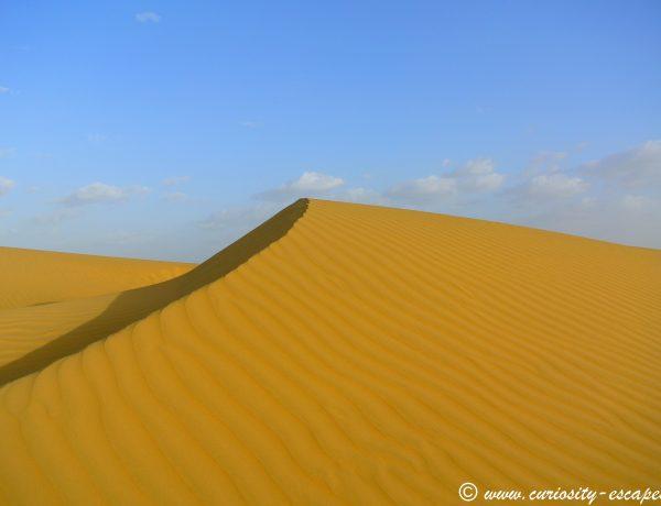 My Camel Safari in Rajasthan