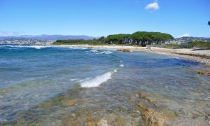 Sainte-Marguerite: a wild island facing famous Cannes [France]