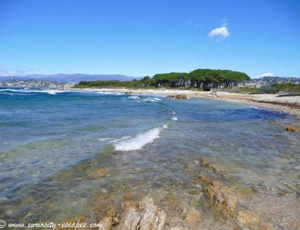 Ste Marguerite : une île sauvage à deux pas de Cannes