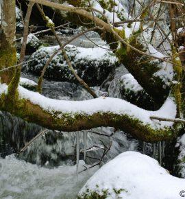 #EnFranceAussi : Randonnée hivernale dans le Pilat
