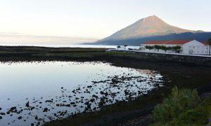 Pico, les Açores : Ultimes coups de cœur & guide pratique