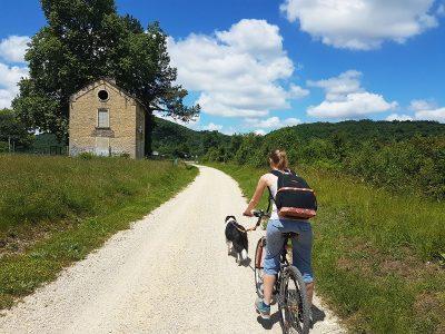 Cyclotourisme en Nord-Isère : De la Voie Verte à la Via Rhôna