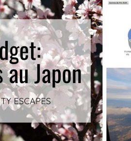 Budget pour 18 jours au Japon