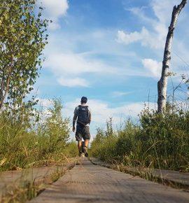 Småland : Le parc national de Store Mosse