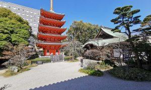 Japon : Fukuoka & Dazaifu